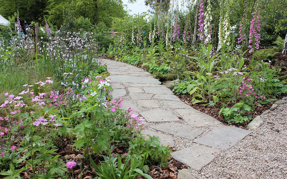 Award winning garden hillsborough johnny knox garden for Garden design northern ireland