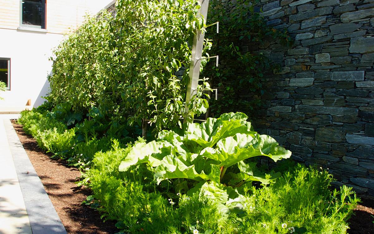 contemporary garden holywood johnny knox garden design belfast northern ireland - Garden Design Northern Ireland