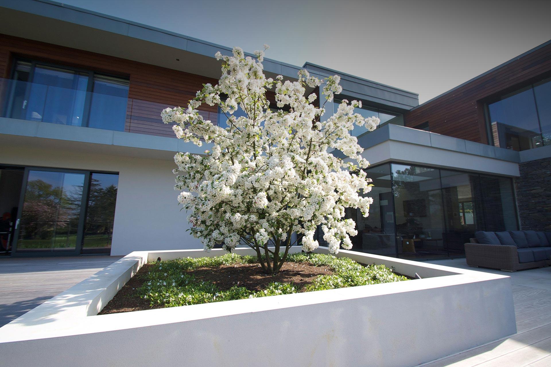 landcape-gardening-belfast