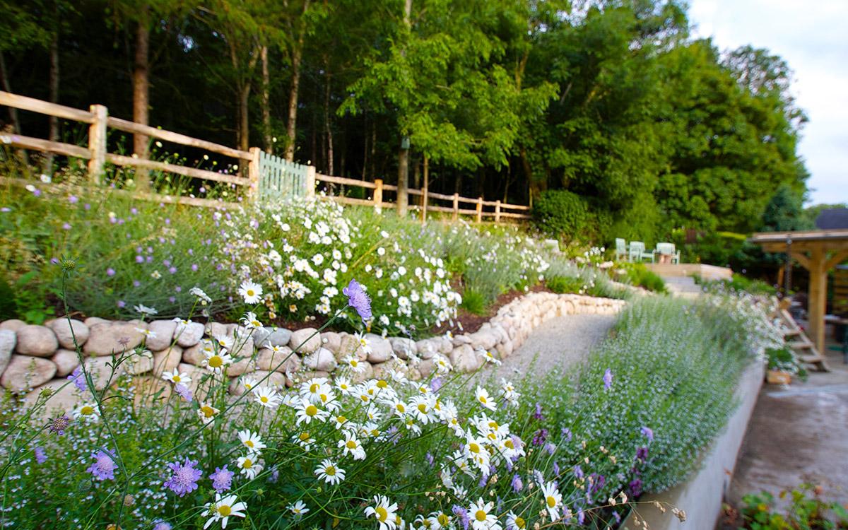 Traditional Garden Ballynahinch - Johnny Knox Garden ...